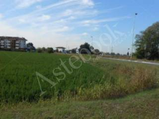 Foto - Terreno agricolo in asta a Melzo