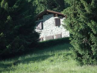 Foto - Rustico / Casale Località Briotti, Ponte in Valtellina