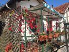 Casa indipendente Vendita Montoggio