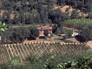 Foto - Terreno agricolo in Vendita a Imola