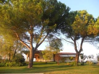 Foto - Villa, ottimo stato, 340 mq, San Daniele del Friuli