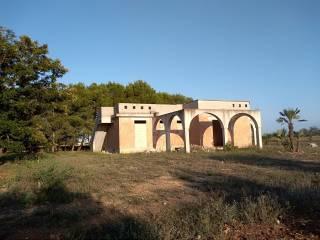 Foto - Terreno agricolo in Vendita a Montesano Salentino
