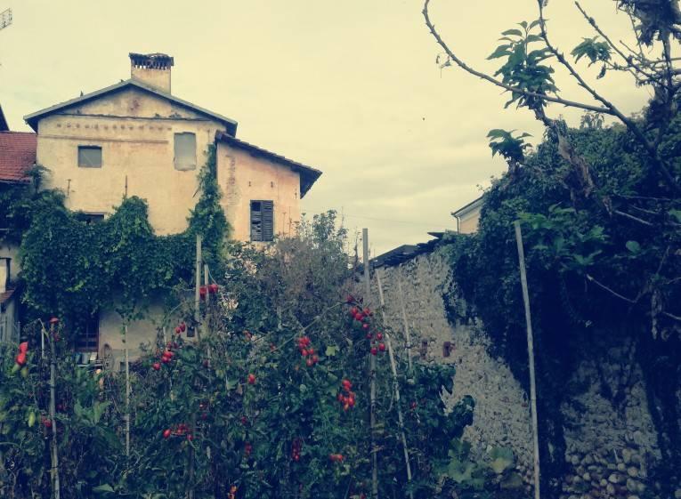 foto  Country house via Torre 3A, Castelletto Stura