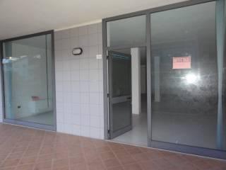 Immobile Affitto Porto San Giorgio
