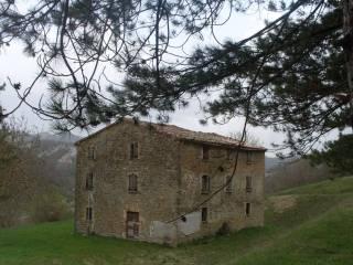 Foto - Rustico / Casale via Enrico Berlinguer 1, Sant'Angelo in Vado