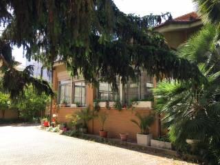 Immobile Affitto Albenga