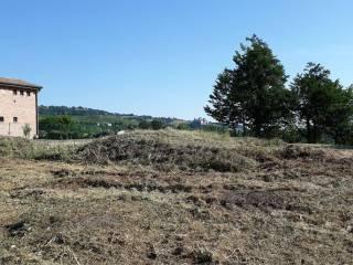 Foto - Terreno edificabile residenziale a Langhirano
