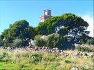 Villetta a schiera Vendita Crispiano