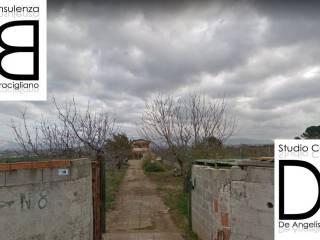 Photo - Appartamento all'asta via dei Platani, San Cesareo
