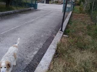 Foto - Villa Strada Provinciale Telese-Gioia 13, San Salvatore Telesino