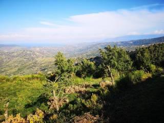 Foto - Terreno agricolo in Vendita a Perdifumo