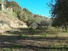 Terreno Vendita Arpino