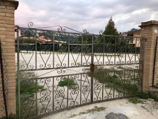 Foto - Terreno agricolo in Affitto a Ferentino