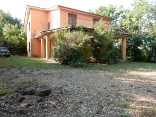Foto - Rustico / Casale Località Monte Falloppo 27, Sutri