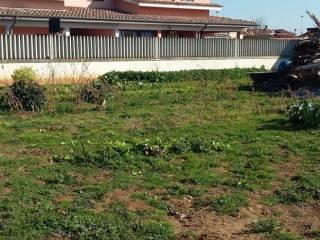 Foto - Terreno edificabile residenziale a Ladispoli