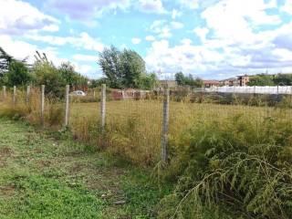 Foto - Terreno agricolo in Vendita a Succivo