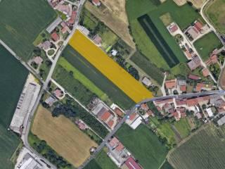Foto - Terreno agricolo in Vendita a Montorso Vicentino