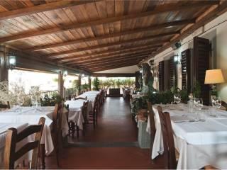 Attività / Licenza Vendita Greve in Chianti