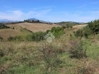 Foto - Terreno edificabile residenziale a Castel di Lama