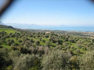 Foto - Terreno agricolo in Vendita a Collesano