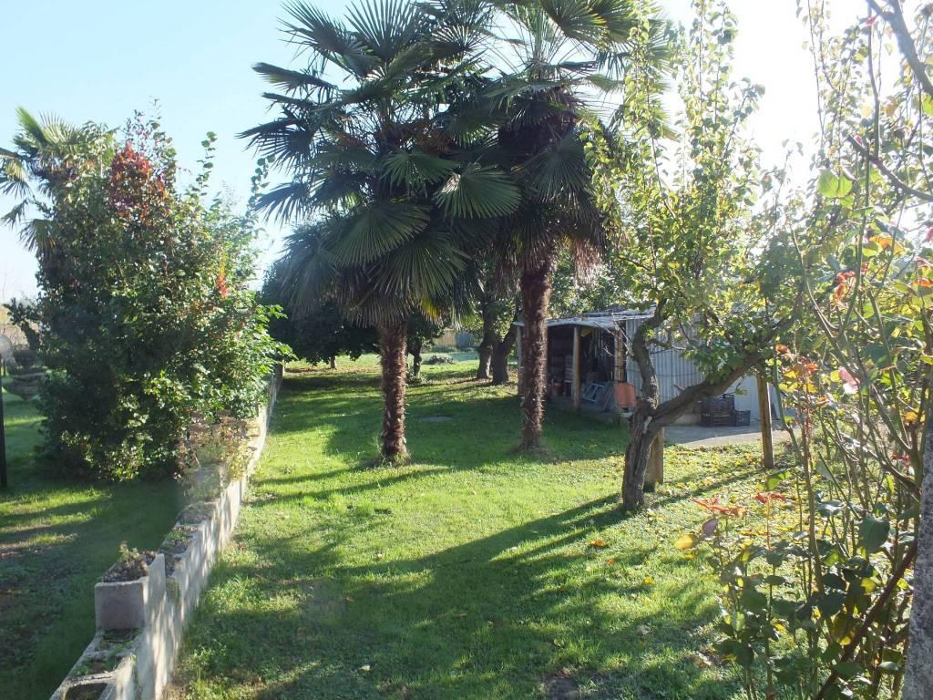 foto  Villa, ottimo stato, 250 mq, Pinerolo