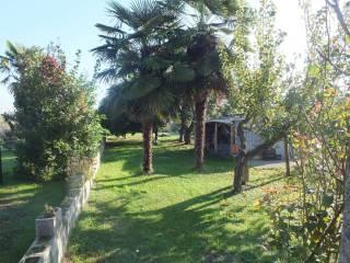 Foto - Villa, ottimo stato, 250 mq, Pinerolo