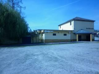 Immobile Vendita Altavilla Monferrato