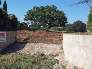 Foto - Terreno edificabile residenziale a Martina Franca
