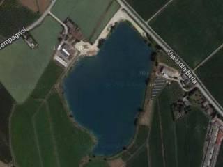 Foto - Terreno agricolo in asta a Zevio