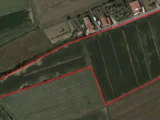 Foto - Terreno agricolo in Vendita a Carlino
