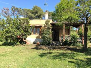 Photo - Single family villa via colle fiorito, 15, Trevignano Romano