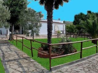 Foto - Rustico / Casale Strada Vicinale del Monticello 10, Vieste