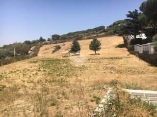 Foto - Terreno agricolo in Vendita a Castel Gandolfo