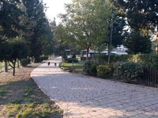 Foto - Villa bifamiliare via Cannelle, Tavoleto