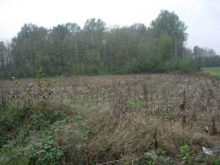 Foto - Terreno agricolo in Vendita a Bregnano