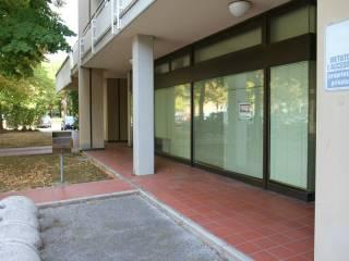 Immobile Affitto Ravenna  3 - Porto