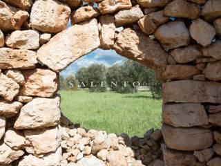 Foto - Terreno agricolo in Vendita a Morciano di Leuca