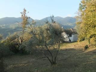 Foto - Villa Strada Collepiane Sant'Eleuterio Paradiso, Mompeo