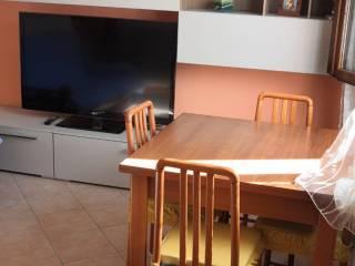 Foto - Casa indipendente 60 mq, buono stato, Rovereto, Novi di Modena