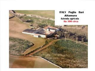 Foto - Terreno agricolo in Vendita a Altamura