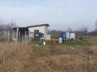 Foto - Terreno agricolo in Vendita a Piossasco