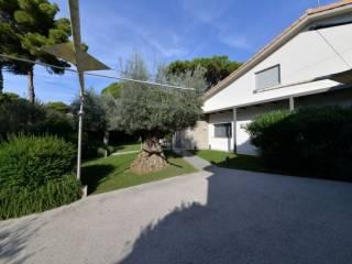 Foto - Villa via della Molletta, Punta Ala, Castiglione della Pescaia