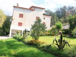 Foto - Villa Contrada Visciglita, Buonvicino