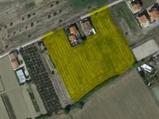 Foto - Terreno agricolo in Vendita a Pineto