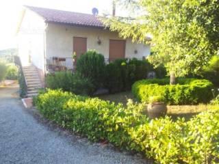 Foto - Appartamento Strada di Basciano, Monteriggioni