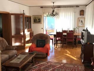 Foto - Appartamento via Pier Fortunato Calvi 14, Pieve di Cadore