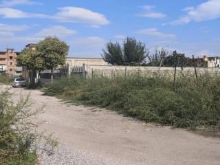 Foto - Terreno agricolo in Vendita a Casoria