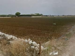 Foto - Terreno edificabile residenziale a Mola di Bari