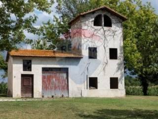 Foto - Rustico / Casale, da ristrutturare, 200 mq, Monsano