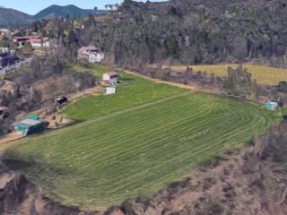 Foto - Terreno agricolo in Affitto a Malnate